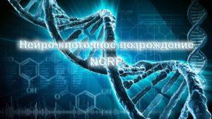 Нейро-клеточное возрождение